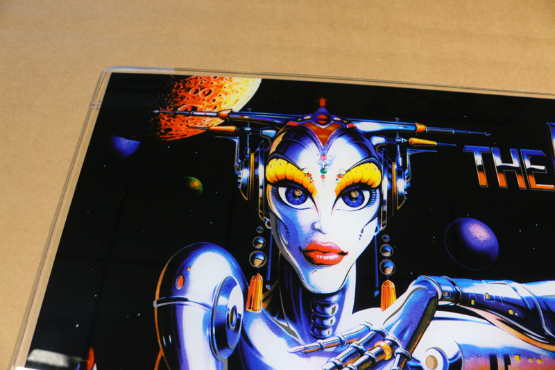 The Machine Bride of Pinbot Manual - DoublePinball